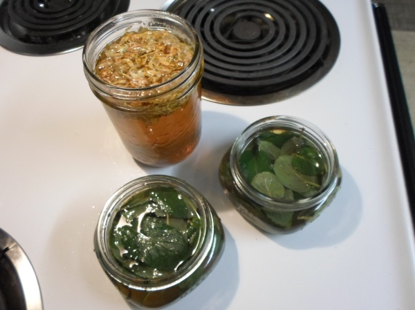 Honeysuckle syrup and spearmint syrup